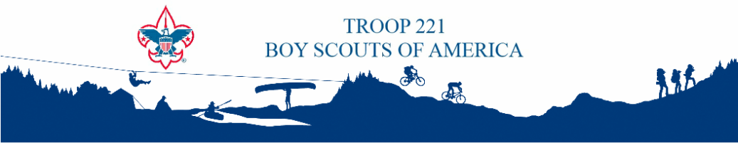 BSA Troop 221
